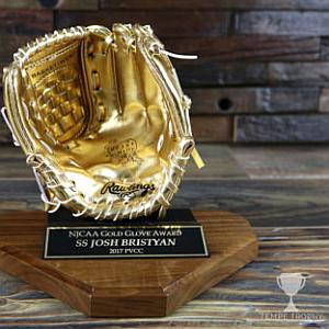 In Baseball, These Awards Would Be a Homerun